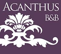 B&B Acanthus